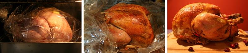 dinde de thanksgiving 1